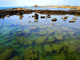 Мозаика морского дна (У стен древней Кейсарии)