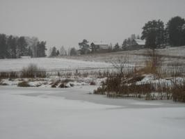 Деревня Большая Протасиха зимой