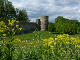 Крепость и цветы