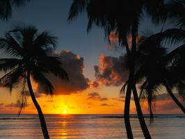 Afternoon Delight, Tobago