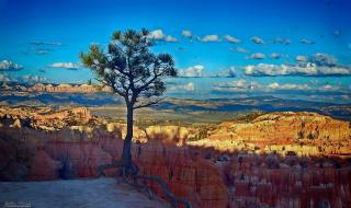 Брайс каньон,США