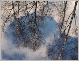 Апрельское небо под ногами... Облачные колечки