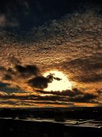 Небо чешуёй блеснуло....