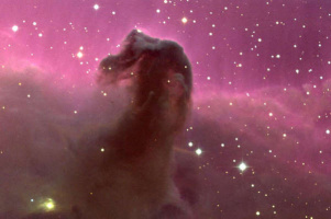 Туманность Конская голова