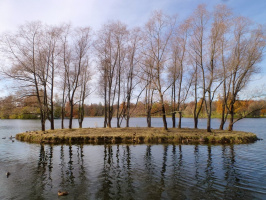 Большой пруд в Екатерининском парке.
