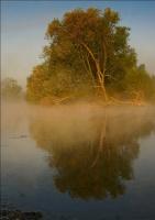 Тает утренний туман