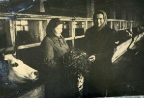 На Крестьяновской ферме