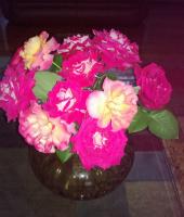 Розы. Июнь 2, 2013