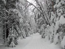 До Пятницы-Снежницы остался 1 день!
