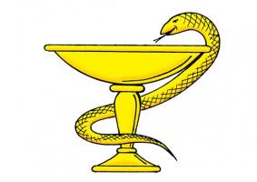 Как называется эта змея?