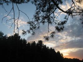 Вечерний пейзаж-2