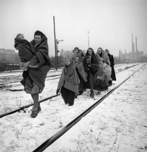 Геноцид немцев цивилизованны…