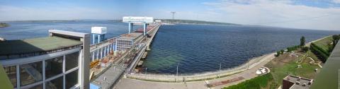 В Саратовском водохранилище обнаружили огромное количество рыб-мутантов