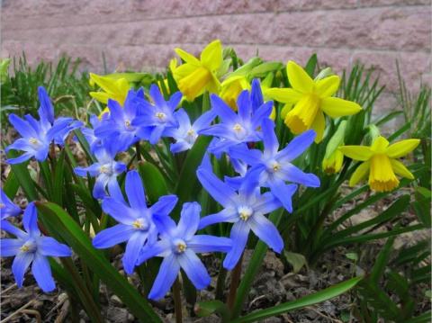 1 апреля – Дарья Грязная: обычаи, обряды, приметы