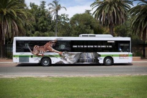 Автобусы бывают разные...