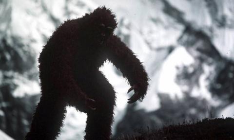 Снежный человек это человек или животное?