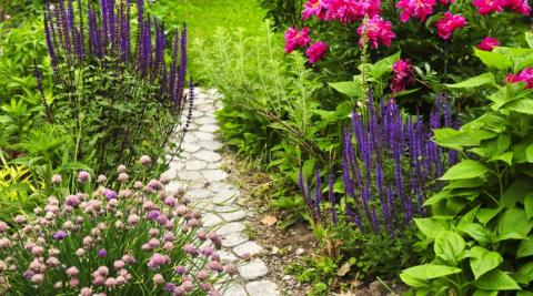 Необычные садовые дорожки – …