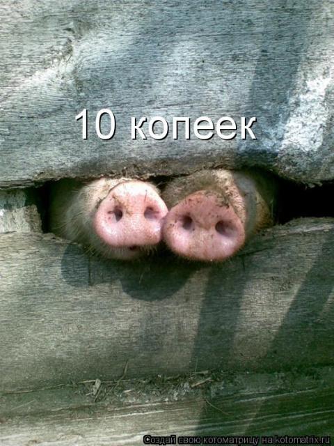 http://mtdata.ru/u1/photo08B5/20376084523-0/big.jpeg