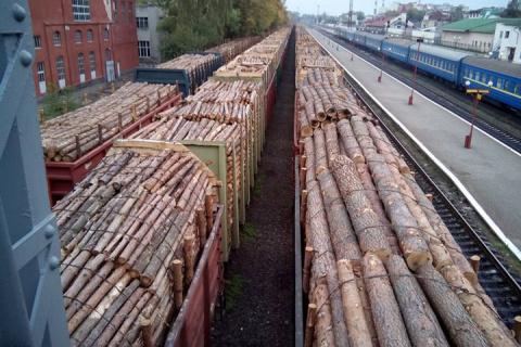 Украинский лес вывозит австр…