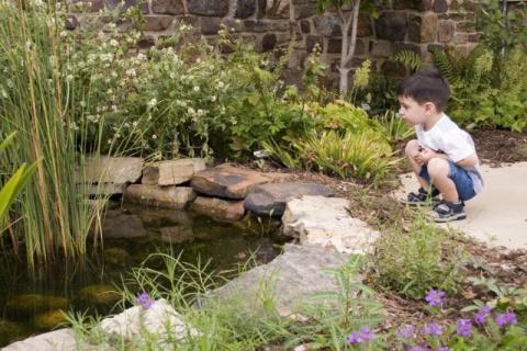 Как сделать пруд безопасным …