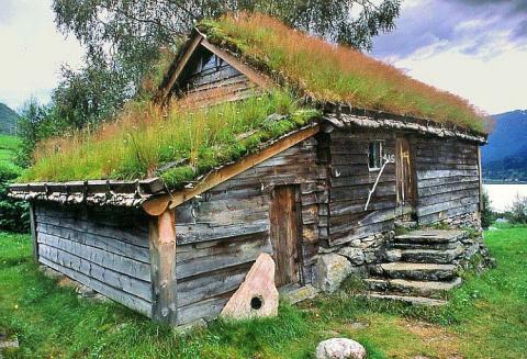Живая крыша - свой собственный райский уголок!