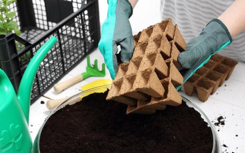 5 лучших рецептов универсального рассадного грунта