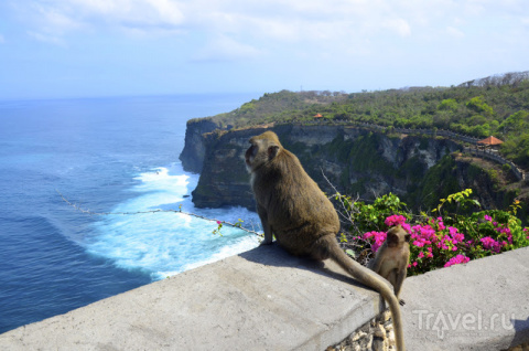 Бали. Почти Индонезия