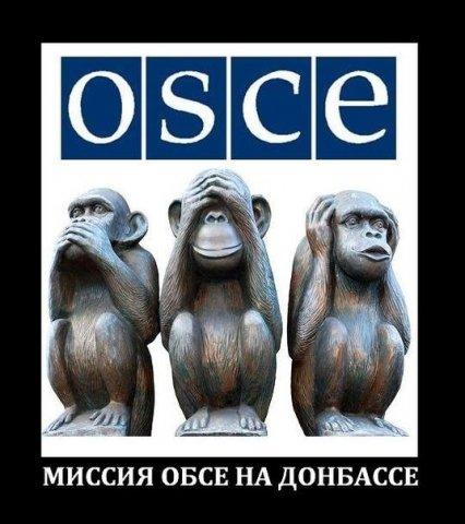 Донецк – дно укросми и «безз…