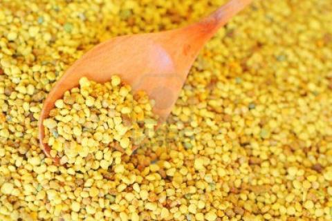 Цветочная пыльца. Лечебное применение