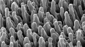 Новые наноповерхности, напом…