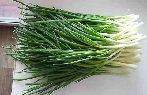 Предлагаю  удивительный способ выращивания зеленого лука, где вам не потребуется земля