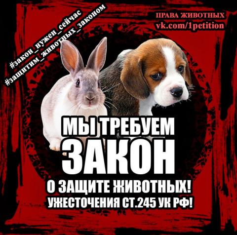Светлана Каргина(Хамствовернусполна)