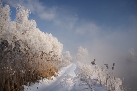 Почему у морозного воздуха т…