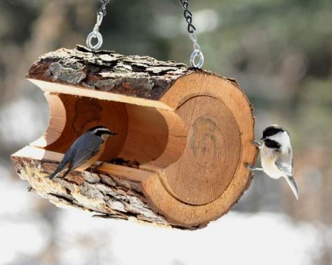 Кормушка для птиц своими руками за 5 минут