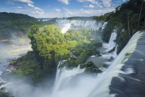 15 красивейших лесов планеты