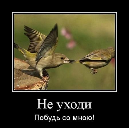 Что мне в том...Мирра  Лохвицкая