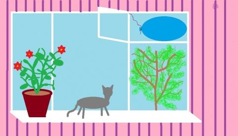 Кот и шарики