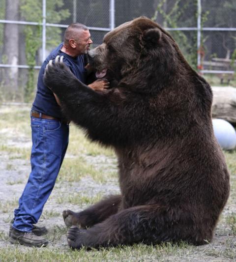 Джим и Джимбо: многолетняя дружба человека и медведя