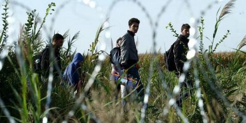 ЕС и миграционный кризис: тайные сценарии