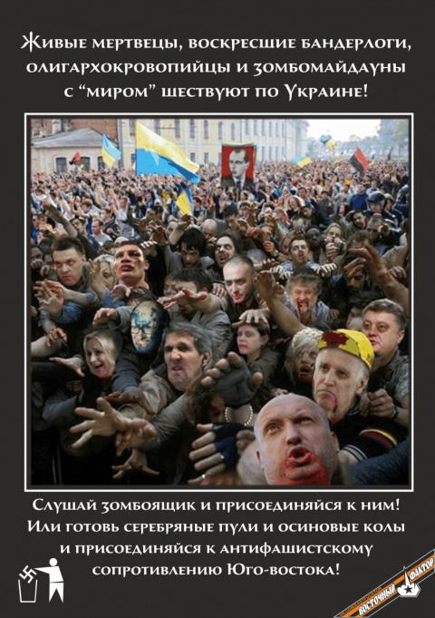 ИТОГИ РЕФЕРЕНДУМА   Донбасс и Луганск свой выбор сделали. Теперь учреждение Новороссийской федерации вопрос технический. Что дальше?
