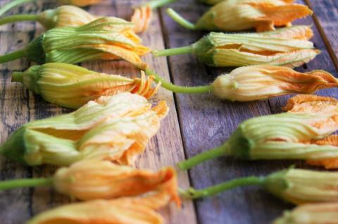 Готовим из цветов кабачка: п…