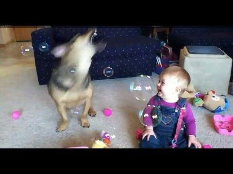 Ребенок, Собака и Мыльные Пу…