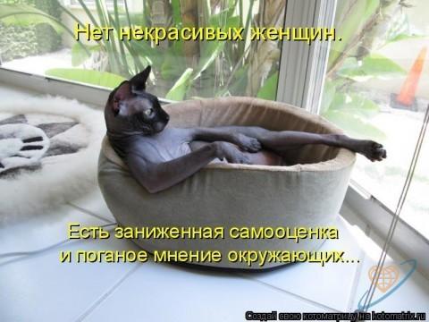 http://mtdata.ru/u1/photo2A80/20431744542-0/big.jpeg