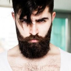 Занимательные факты о бороде