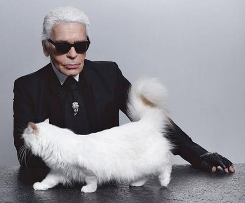 Любимая кошка Карла Лагерфел…