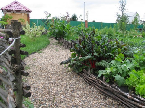 Как правильно спланировать огород – грамотный подход к грядкам