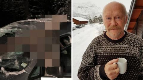 В Норвегии лось влетел в сал…