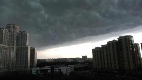 Большинство россиян считают, что климат Земли стал непредсказуемым
