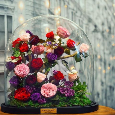 Розы в стиле м/ф «Красавица …
