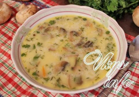 Суп на курином бульоне с шампиньонами и сливками